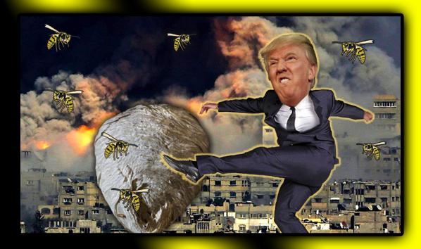 Trump Kicks Hornets Nest
